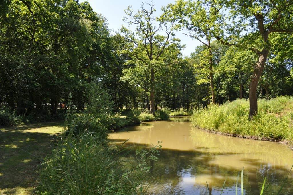 Woodland lake 4 (3)