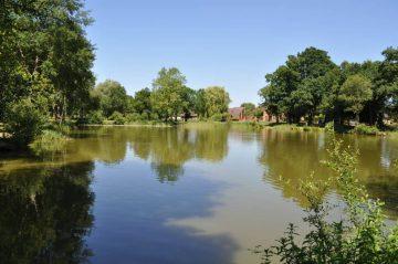 Lake 2 (3)